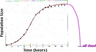yeast growth curve #1